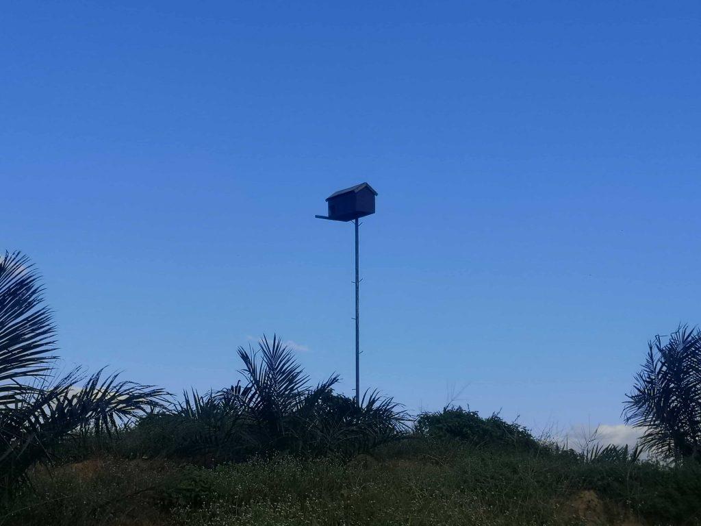 mars hill sepang bird nest box